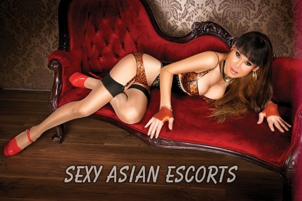 hot japanese escorts anna escort