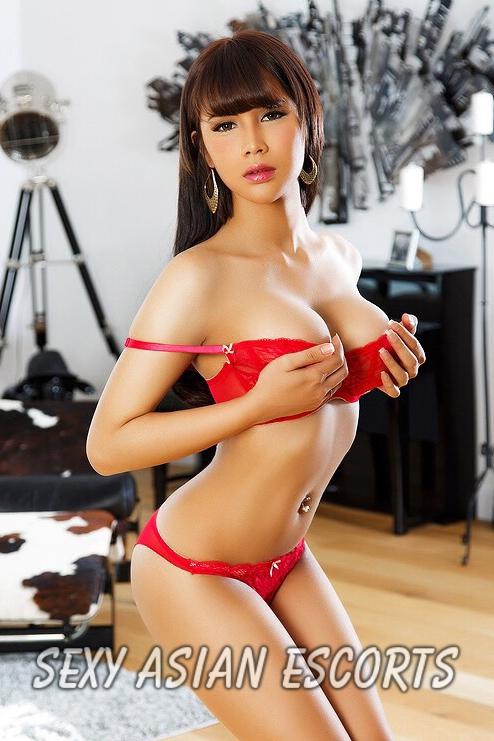 sexy asian escorts escorts brum